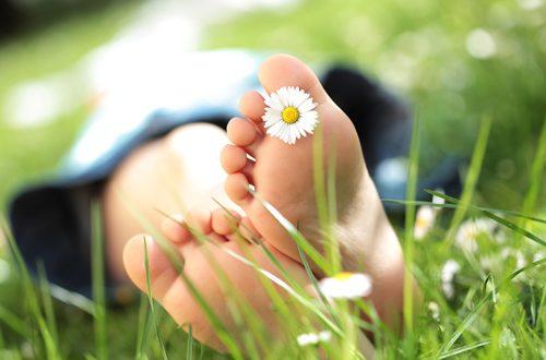 Genießen Sie Ihren Garten: Wir unterstützen Sie je nach Bedarf mit einer Voll- oder Teilpflege Ihres Gartens. Guter Plan. Perfektes Grün. Freiformat.