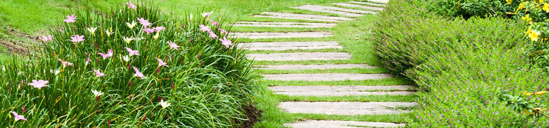 Freiformat Datenschutz Weggestaltung mit Taglilien